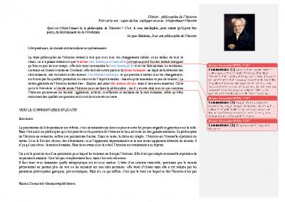 Schopenhauer la philosophie de l'histoire